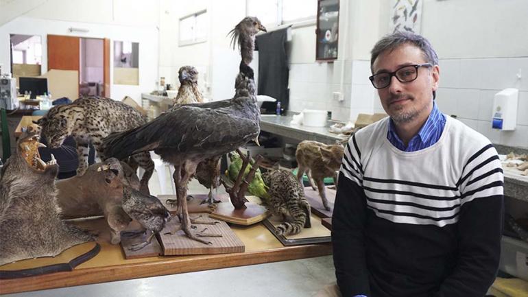 Nacho Legari es conservador de colecciones. (Agencia Córdoba Cultura)