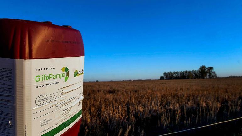 Impactados por el nuevo valor del dólar, que potenció sus deudas en pesos por insumos, los productores agropecuarios recalculan su situación. Por ahora, no hubo cortes de pagos en la cadena agrícola-ganadera.
