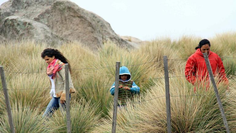 La brisa y el frío en las caras. Nidia, Axel, y Mrina caminan entre los pajonales, cuyos colores determinan el tono de los paisajes de cada estación. El invierno con viento cala más (La Voz/Marcela Marbián).