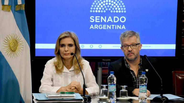 En contra. Silvia Elías de Pérez, la senadora que lidera el rechazo. (Télam)