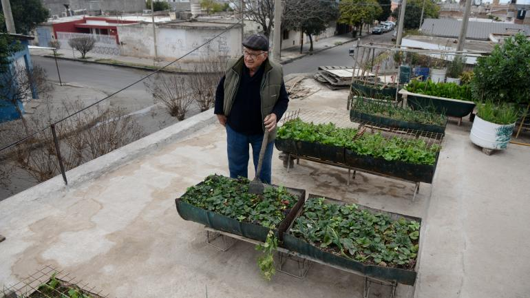 En la terraza. Andrés Ramírez cultiva su huerta en la terraza de su casa, en Villa Azalais. Regala todo lo que no consume a sus veicnos. (José Hernández)