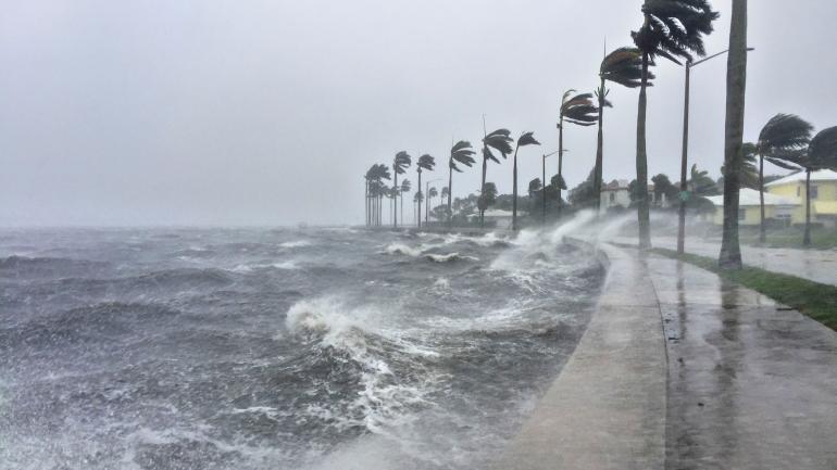 """uertes vientos golpean el 10/09/2017 a la ciudad de West Palm Beach, Florida, EEUU, durante el paso del huracán """"Irma"""". (DPA / Archivo)"""