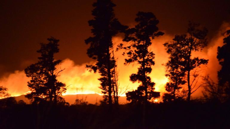 VILLA CIUDAD DE AMÉRCIA. En el lugar trabajaron 10 dotaciones de bomberos. (María Belén Barroso)