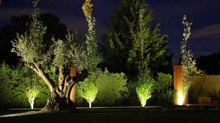 C mo iluminar el jard n tips para mejorar las noches del for Iluminar arboles jardin