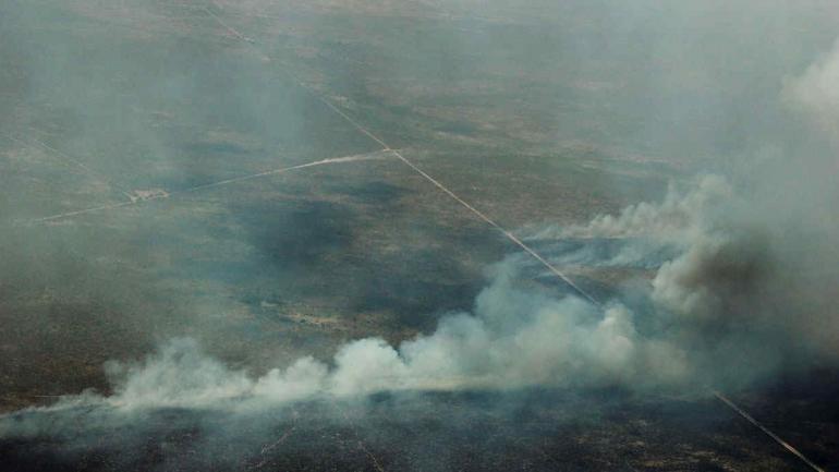 LA PAMPA. Incendio forestales.