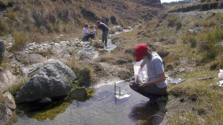 Mediciones. El trabajo comparó caudales y calidad del agua en arroyos con forestaciones cercanas y otros con sólo pastizales en sus bordes.