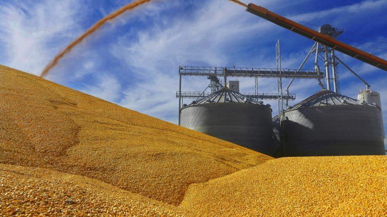 Peso propio. Córdoba es la principal productora de maíz del país. (AP)