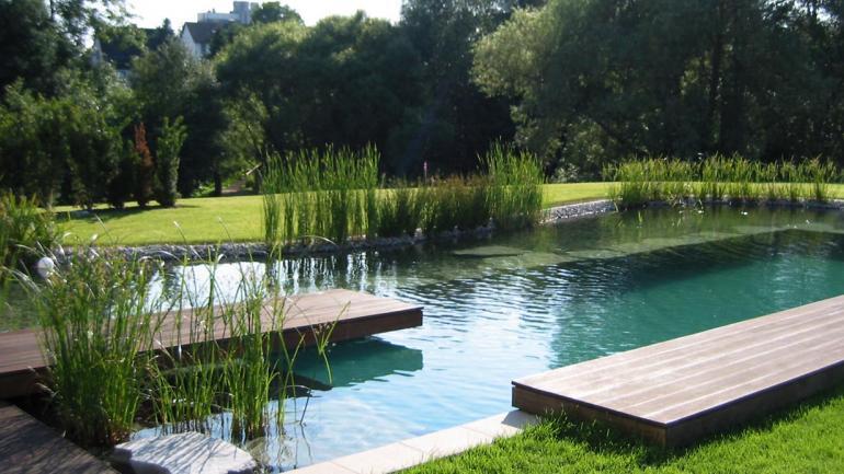 C mo refrescarse naturalmente las piscinas ecol gicas for Albercas ecologicas