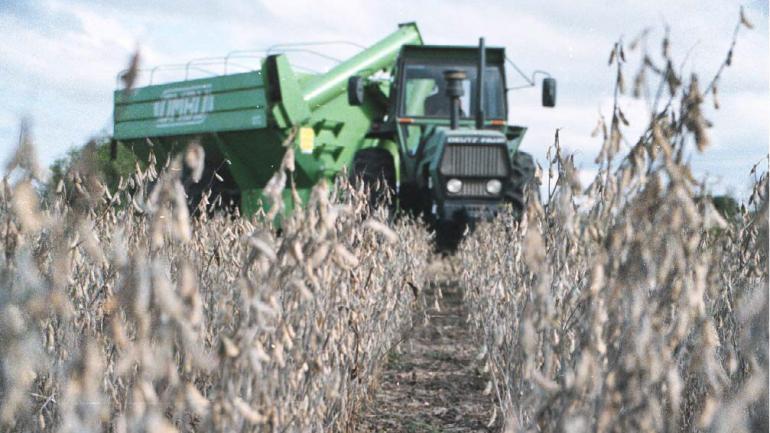 RESULTADOS. La cosecha 2017/18 de soja en el país fue la más baja de la última década, según datos oficiales. (LA VOZ)