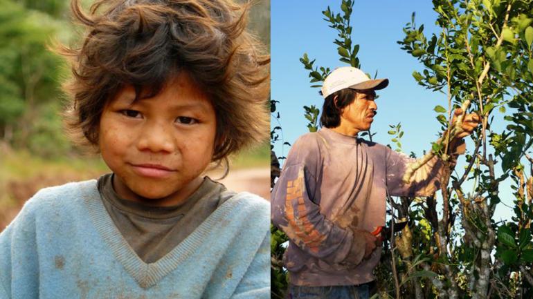 """Los más vulnerables. Los niños comienzan a trabajar entre los 4 y los 13 años. Foto: Pablo Valle / """"Un sueño para Misiones""""."""