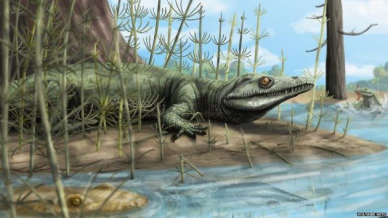Un fósil de una nueva especie de reptil, descubierto en Brasil ...