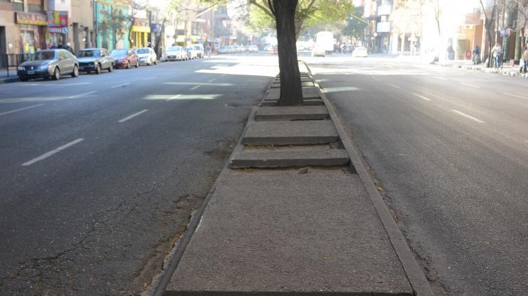 En bulevar Arturo Illia y Paraná, se aprecian cuatro cazuelas vacías hasta llegar al primer árbol en pie. (José Hernández)