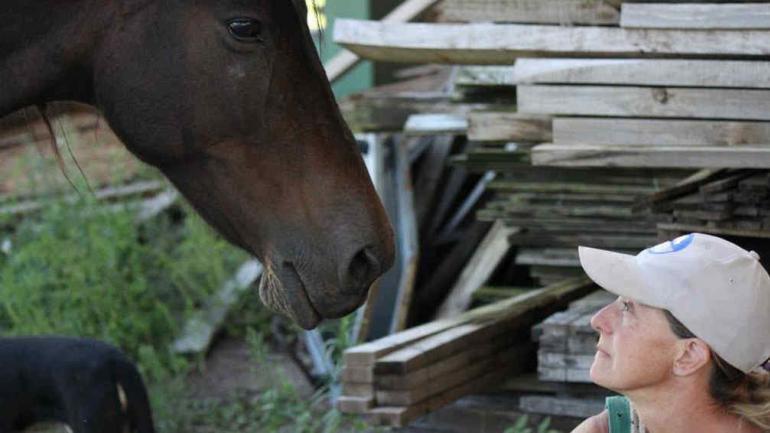 Alguien que vela por los animales. Claudia Bustelli en el Refugio Cherubicha, de Villa Rumipal, con un caballo rescatado (Gentileza Cherubicha).