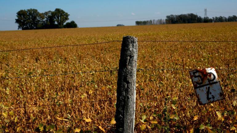 SEQUÍA. El cambio climático incrementará la frecuencia e intensidad de las sequías y otros eventos extremos. (AP)