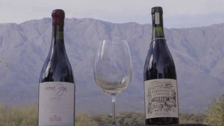 Los premiados vinos de La Matilde de San Javier.