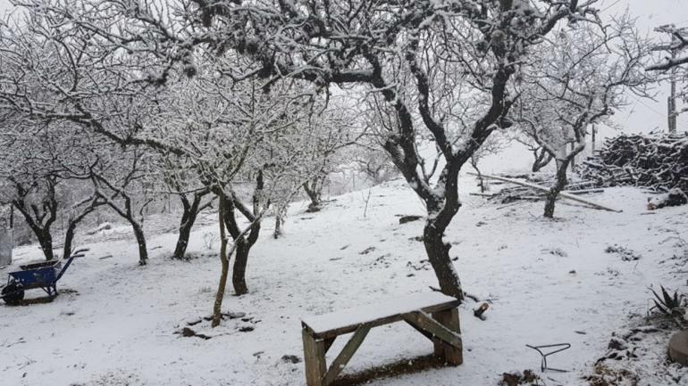 Nieve en Chacay, al sur de la provincia de Córdoba (Foto: Puntal.com.ar).