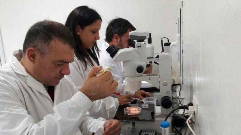 """El instituto de Reproducción Animal Córdoba-Biogen es una de las pocas empresas """"biotech"""" de Córdoba."""
