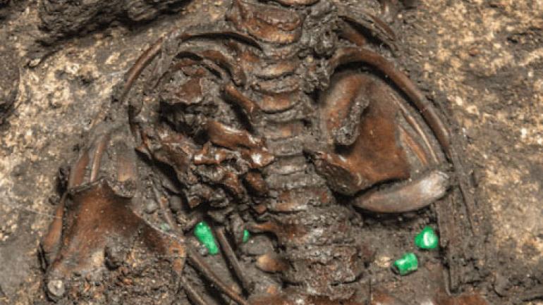 Restos de un entierro infantil dedicado a Huitzilopochtli. (INAH)