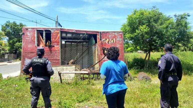 CIRCO. Los monos araña rescatados estaban en un vagón de circo abandonado. (@MARN_SV)