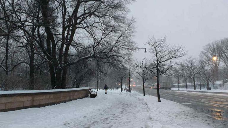PRIMAVERA BAJO CERO. Estados Unidos comenzó la temporada de las flores y el polen con nieve. (Pamela Subizar)