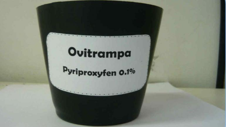 Las ovitrampas del Citedef contienen el larvicida adherido al plástico.