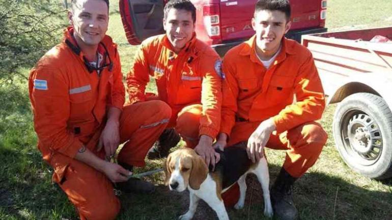 Los rescatistas. Los bomberos Andrés González, Matías Berg y Andrés Ramírez; rescataron a Patán. (Puntal)