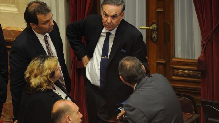 Pichetto, senador clave en la negociación por tarifas (Federico López Claro).