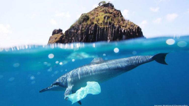 La propuesta va en sintonía con una ordenanza de Pinamar que prohibió su uso para evitar contaminar las playas. (La Voz / Archivo)