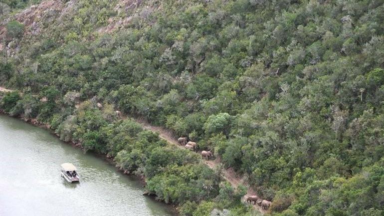 La reserva se encuentra próxima a la ciudad de Kenton-on-Sea, en el sudeste sudafricano. (Facebook.)