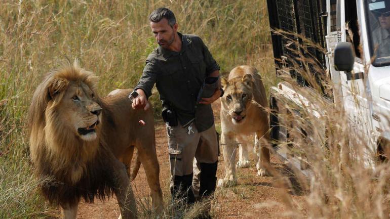 """SUDÁFRICA. Kevin Richardson, apodado """"el encantador de leones"""" (AP)."""