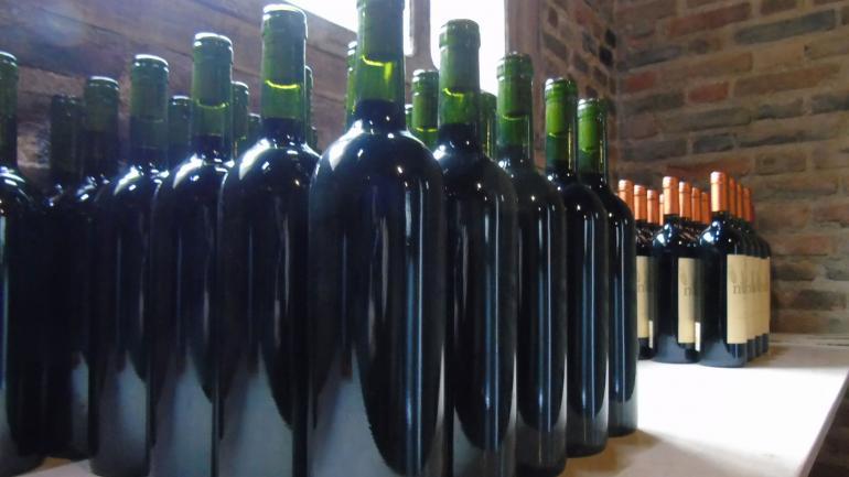 El Noble. Desde San Javier, con 11 cosechas, logró vinos premiados. (La Voz)