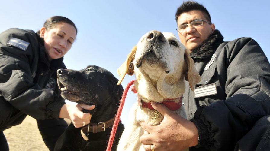 Retiro feliz. Alfa (negra) y Betty, con sus adiestradores Zulma Flores y Luis Montoya (La Voz / José Gabriel Hernández).